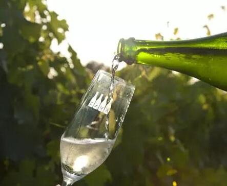 卡瓦法定产区协会通过重大计划协议,以提高西班牙起泡酒地位