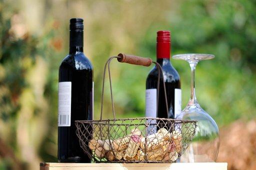 葡萄酒的各种原料都是哪些呢?