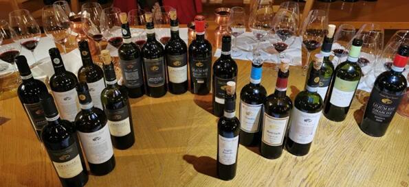 意会!葡萄酒学院讲师酒庄深度探访学习 从FRIULI到VENETO