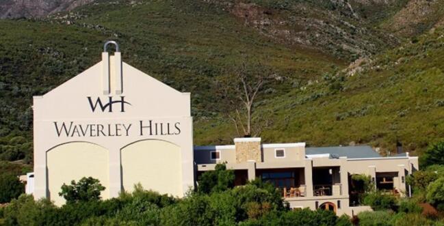 南非酒莊Waverley Hills收獲首批Marselan葡萄