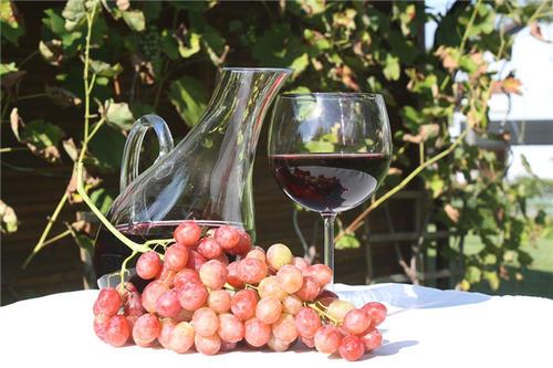 喝红酒做品味健康女人是怎么样的呢