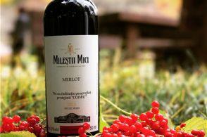 葡萄酒酒标常见英文术语解释,赶紧收藏吧