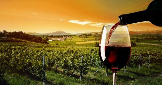 開啟葡萄酒瓶時的壯麗場面是怎么樣的呢