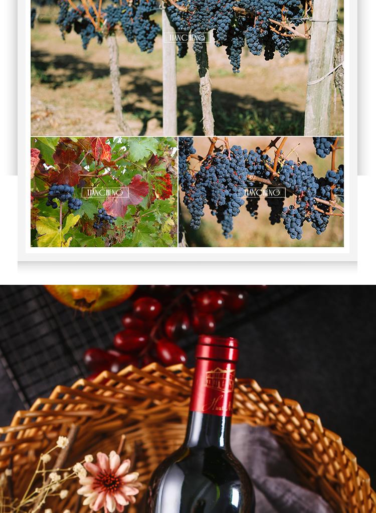 法国波尔多奥内维利城堡梅洛赤霞珠AOC干红葡萄酒(福建天成集团)