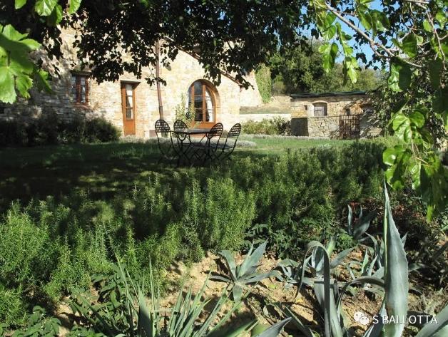 意大利Casa Sola酒庄