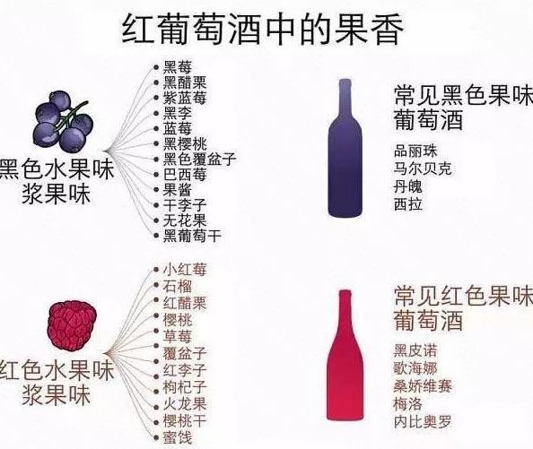简单实用的品酒入门指南,人人都懂品酒~