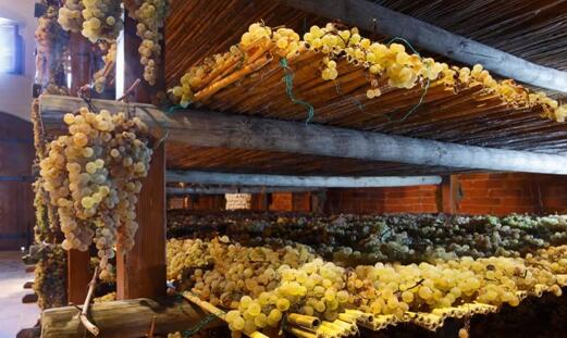 受到肺炎疫情冲击,意大利葡萄酒行业深陷困境