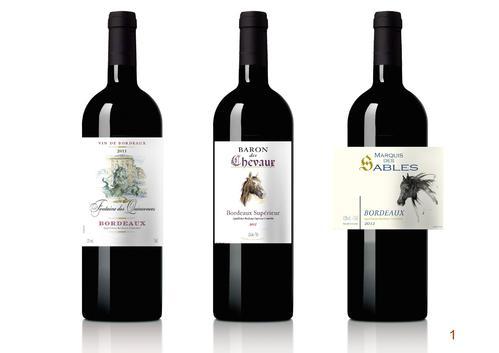 法国红酒多种味道,你可以喝出来吗