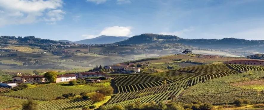 意大利多个产区协会与圣保罗银行签署信贷协议,为行业提供资金帮助