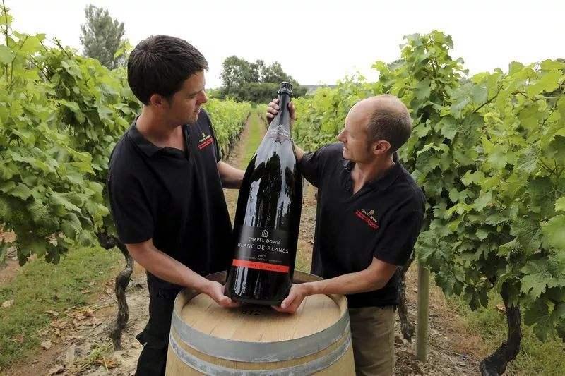 英国葡萄酒零售商Majestic公布新计划,重新赢回流失的客户