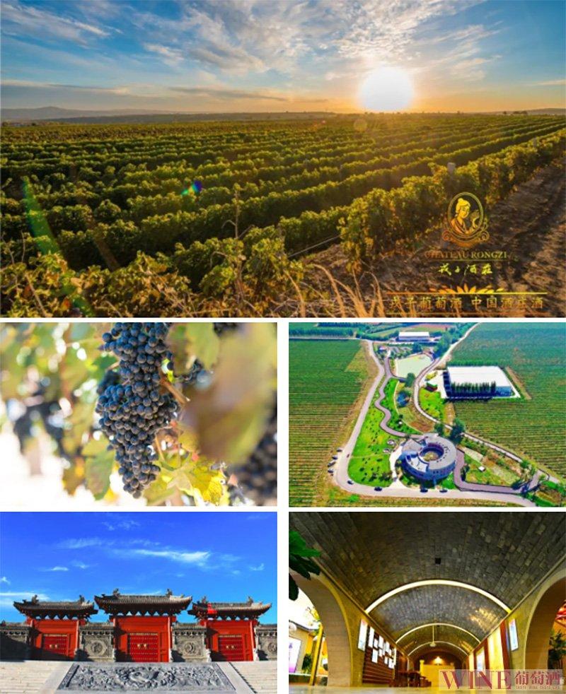 邂逅秦晋最美酒庄,8月让我们共赴一场黄土高原上的美酒之约!