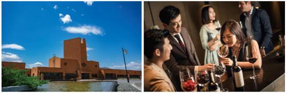 """2020中国•怀来国际葡萄酒博览会 与您相约走进""""中国葡萄酒之乡"""""""