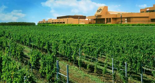 第五屆省旅游產業發展大會重點打造懷來葡萄產業融合示范區