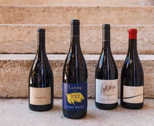 第十九届意大利黑皮诺葡萄酒大赛结果出炉