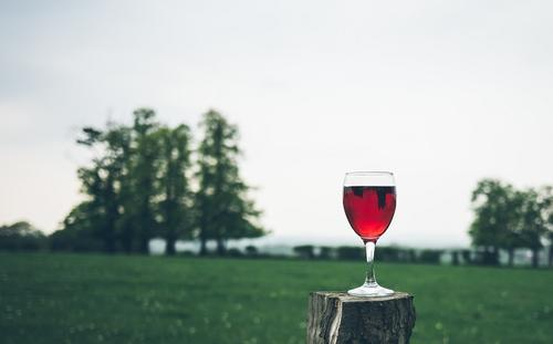 北美葡萄酒经销公司Southern Glazer在美国市场推出B2B电子商务平台