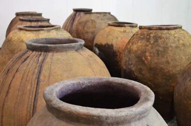 西班牙Govalmavin研究项目结束,用于生产优质葡萄酒