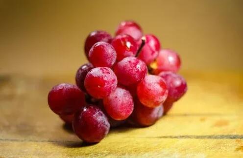 快看!这里有10个令人惊叹的葡萄酒小知识