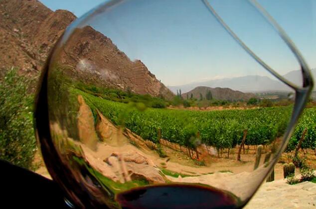 在过去一年里,阿拉贡葡萄酒不受美国关税征收政策影响