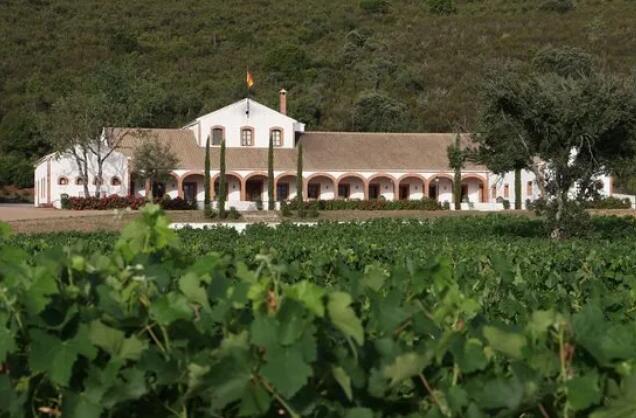 西班牙卡里萨牧场酒庄小维多葡萄酒荣获Cinve大赛金奖