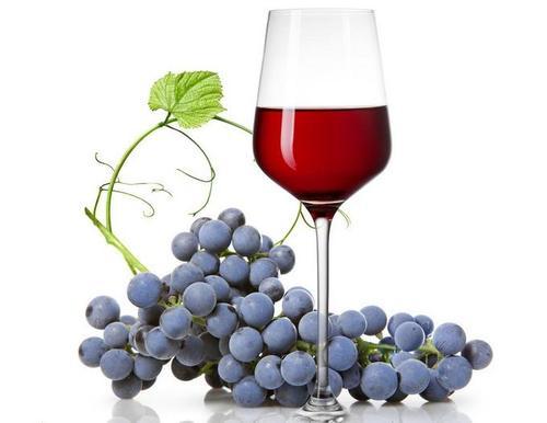 葡萄酒别还有哪些别的用途