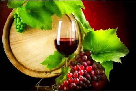 新旧世界葡萄酒有什么区别