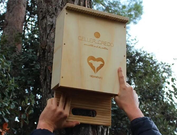 Celler Credo酒庄倡议利用葡萄酒包装箱为蝙蝠提供人工巢穴
