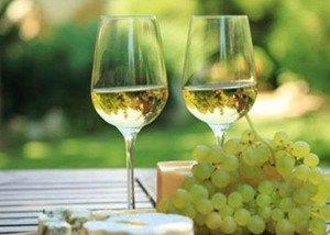 夏季适合喝清淡型的葡萄酒