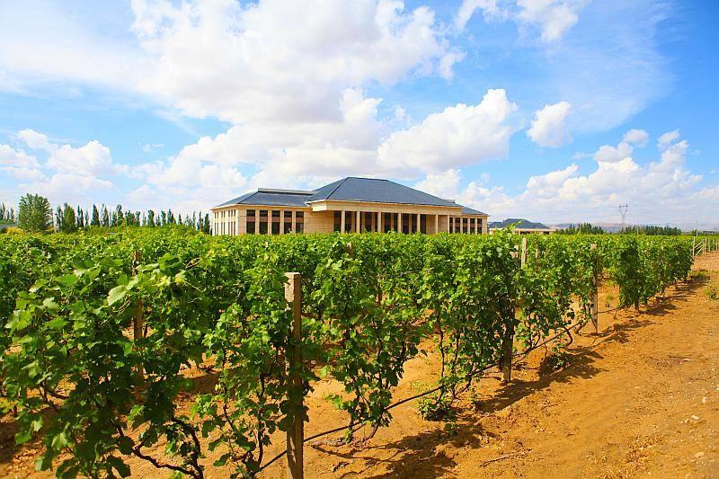 西北农林科技大学乡村振兴专项研究生内蒙古乌海基地在阳光葡萄酒庄成立