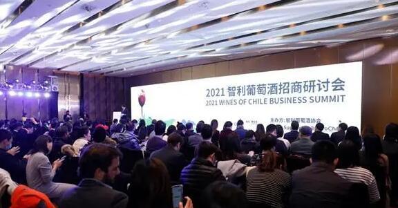 智利葡萄酒招商研讨会在上海举行