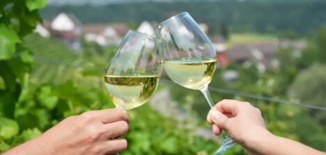 意大利马尔凯大区维迪奇白葡萄酒去年销量不错