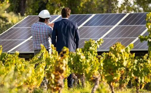 西班牙某酒庄使用太阳能电池板环保供电