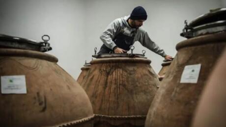 """阿布鲁佐葡萄酒生产商发起""""陶罐葡萄酒之城""""项目"""