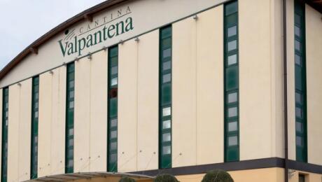 新企业维罗纳酒庄诞生,可以生产约30万公担葡萄