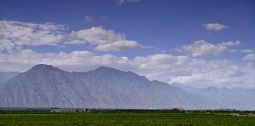 《中国葡萄酒地理》编纂工作正式启动