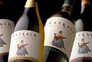 中国占智利葡萄酒出口总额的12.6%