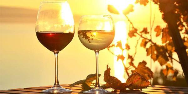 葡萄酒的味道是从哪里来的呢?