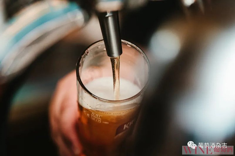 """青岛啤酒为酵母建了所""""银行"""""""