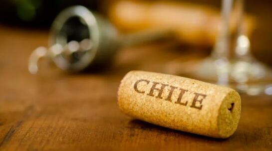 今年第一季度智利葡萄酒对华出口增长了40.6%