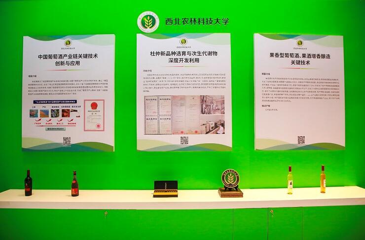 西北农林科技大学中国葡萄酒产业链关键技术创新与应用项目在首届高等学校科技创新大会上亮相