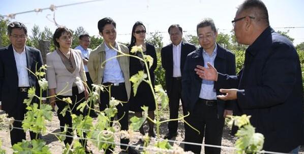 中国农业发展银行与宁夏政府签署战略合作协议