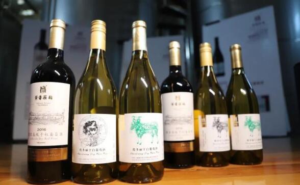 3款和硕葡萄酒在2021年IWSC大赛中荣获奖牌