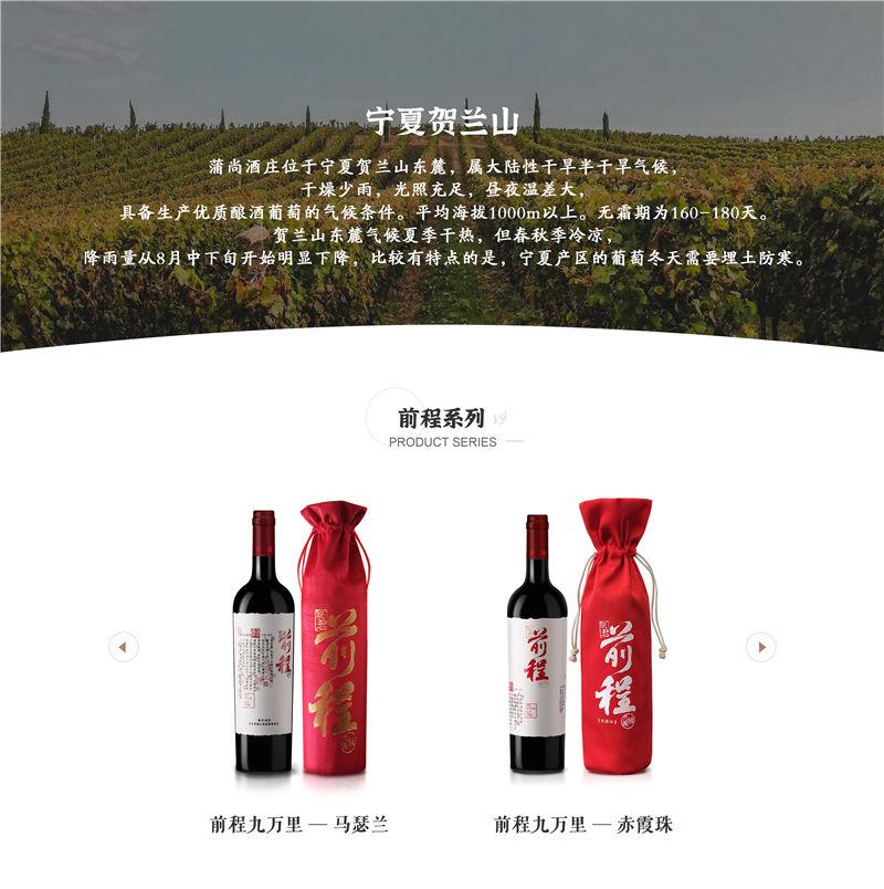 中国宁夏产区蒲尚酒庄·前程九万里赤霞珠干红葡萄酒红酒