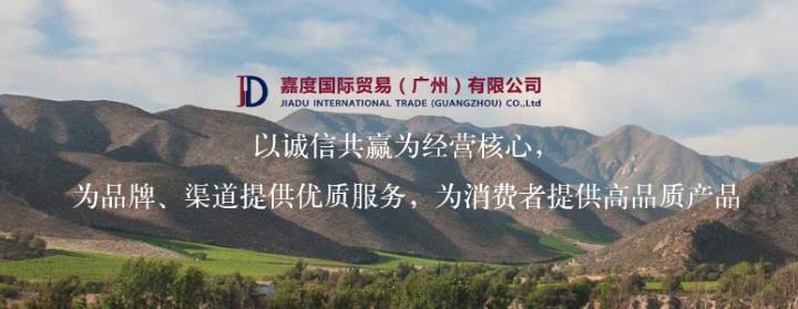 嘉度国际贸易(广州)有限公司介绍