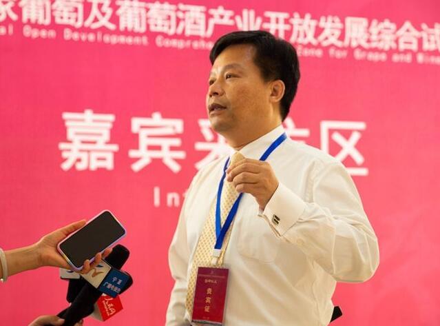 """浙江大学教授周玲强表示""""综试区""""成立有助于提升宁夏葡萄酒旅游产业"""