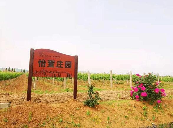 """""""怡萱""""品牌入选品牌强国示范工程葡萄酒行业优选成员单位"""