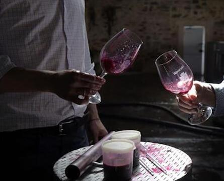 """受征收关税影响,澳洲葡萄酒出口中国市场将""""完全停止"""""""