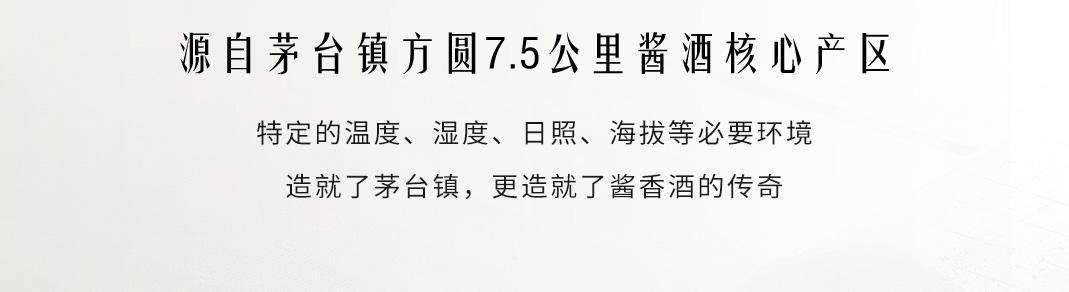 贵州茅台镇丝路久远·万里风光酱香型酒