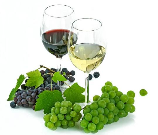 带你体验西西里普拉奈达酒庄行!