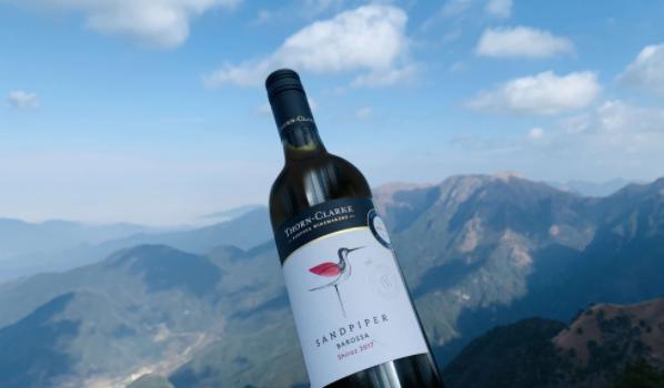 如何推广中国优质葡萄酒,要做哪些工作?