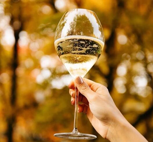 全球香槟销量持续上涨